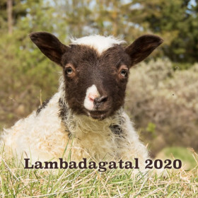 Lambadagatal 2020